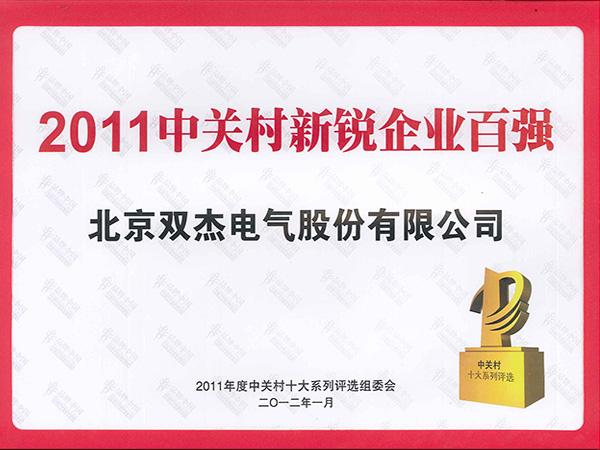 Zhongguancun Top 100 New Company