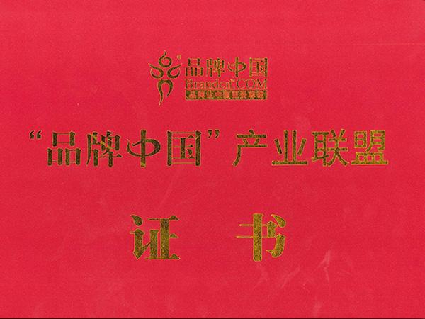 Certificate of Brandcn.COM